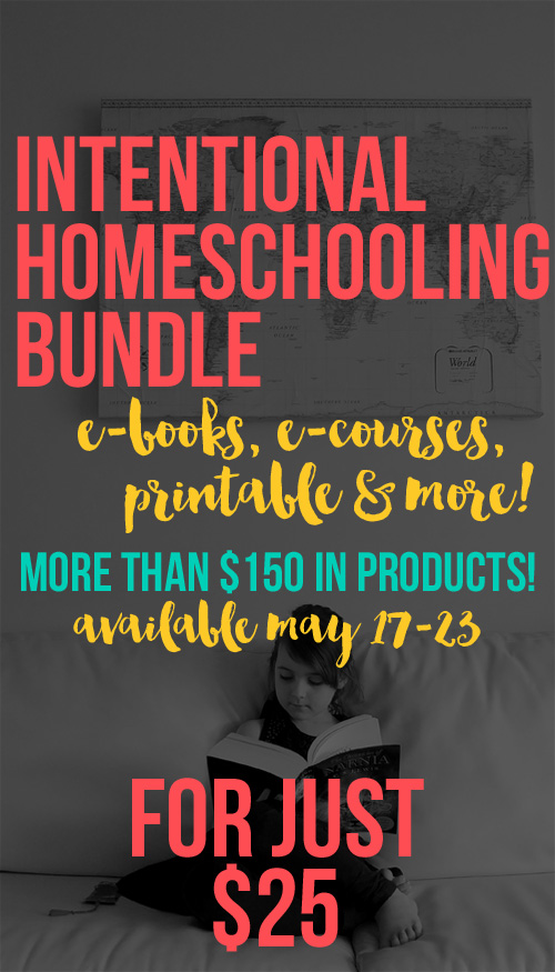 Homeschool Bundle Sale - over $160 in products for just $25!