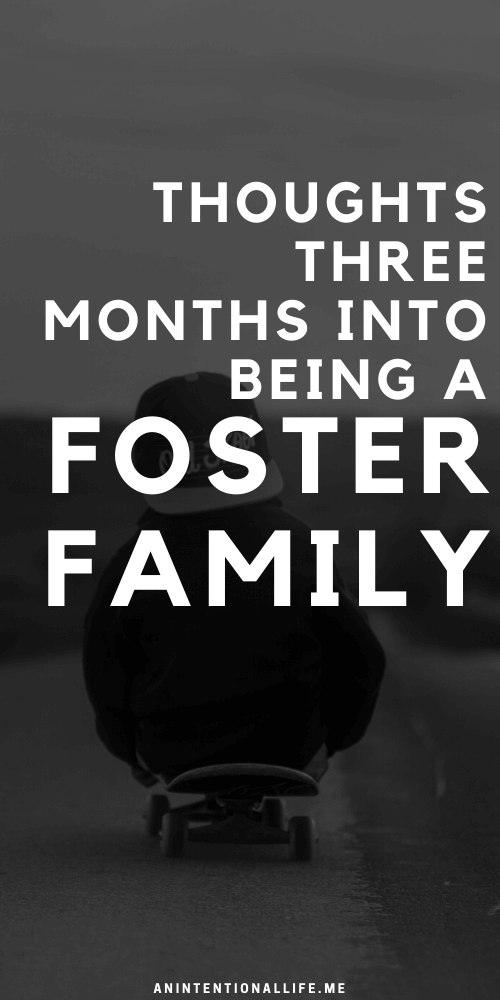 Three Months Into Fostering: The Good and the Hard