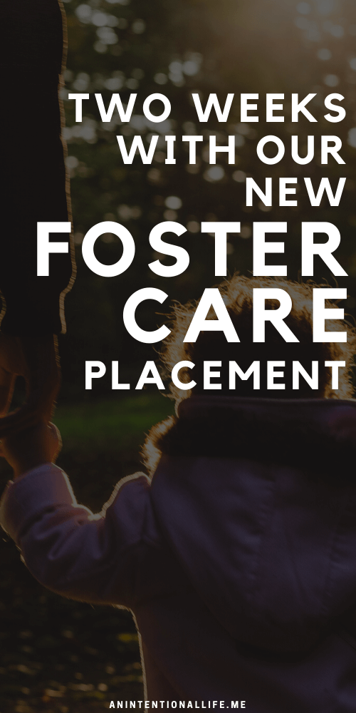 Foster Family Life - What Life Looks Like Two Weeks into a New Placement