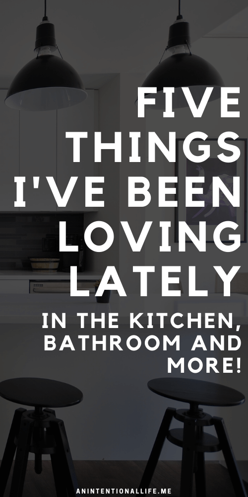 Five Things I'm Loving Lately - air fryer, GroClock, Book Outlet and more!