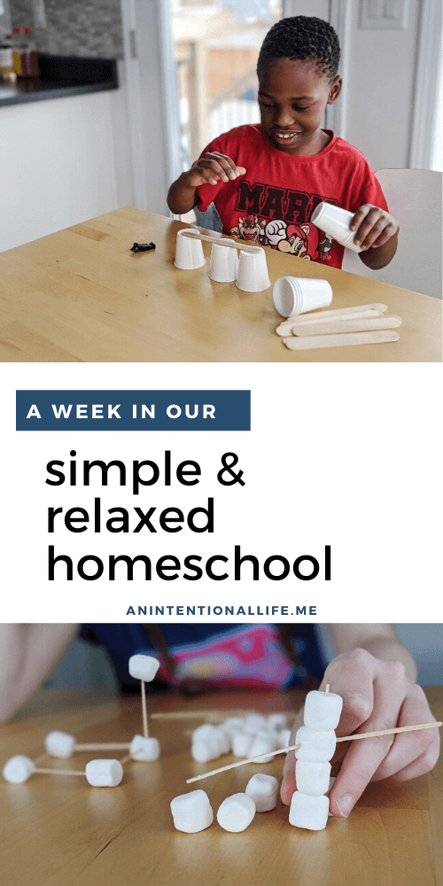 A Peek Inside Our Simple and Relaxed Homeschool Week - Unschooling
