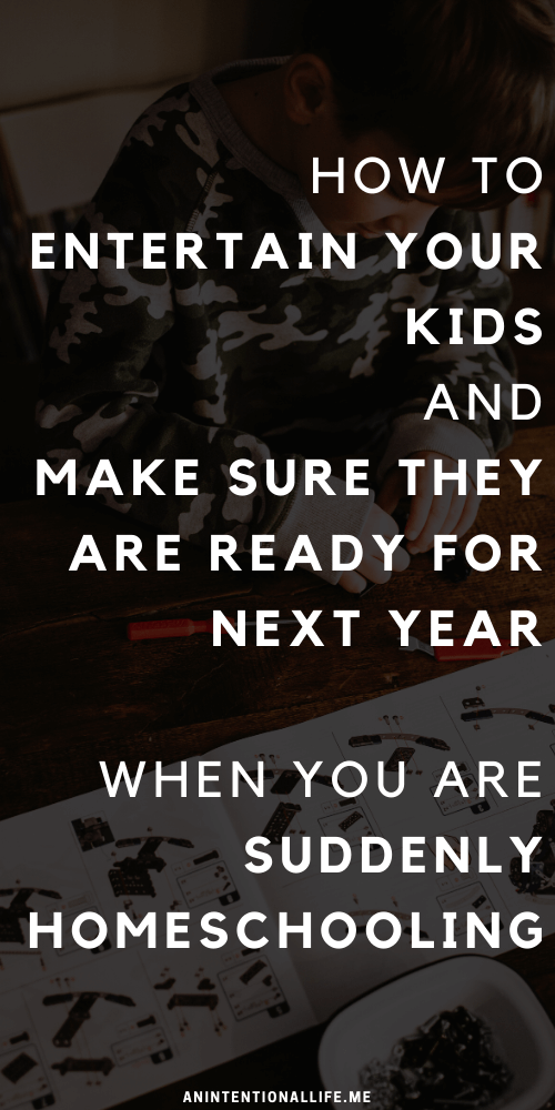 How to Entertain Your Kids and Make Sure They Are Ready for Next Year when you are Suddenly Homeschooling