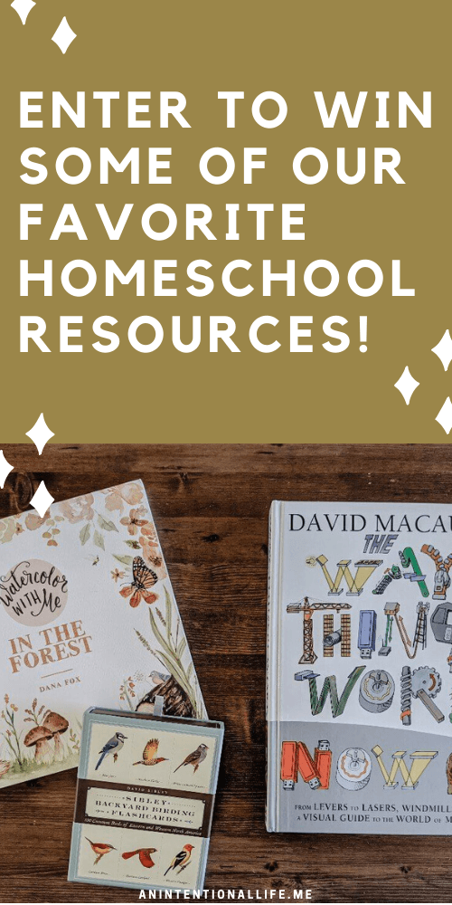 Homeschool Resource Giveaway - Win $100 worth of our Favorite Homeschool Resources