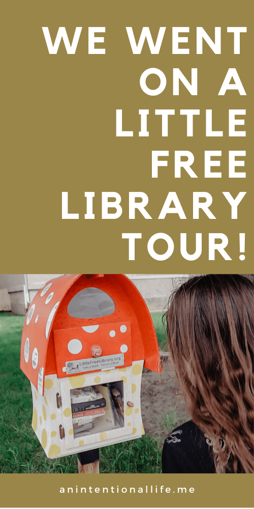 Little Free Library Tour and Book Haul