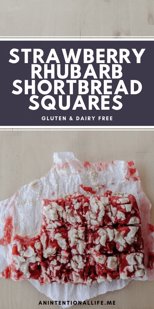 Strawberry Rhubarb Shortbread Squares - dairy free and gluten free!