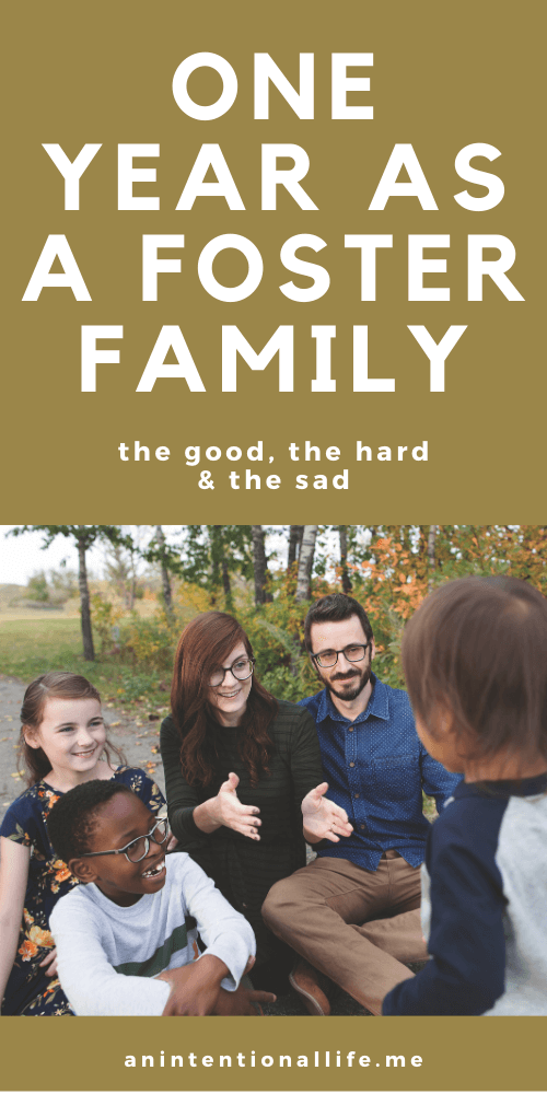 One Year Fostering Update - our experiences our first year as a foster family