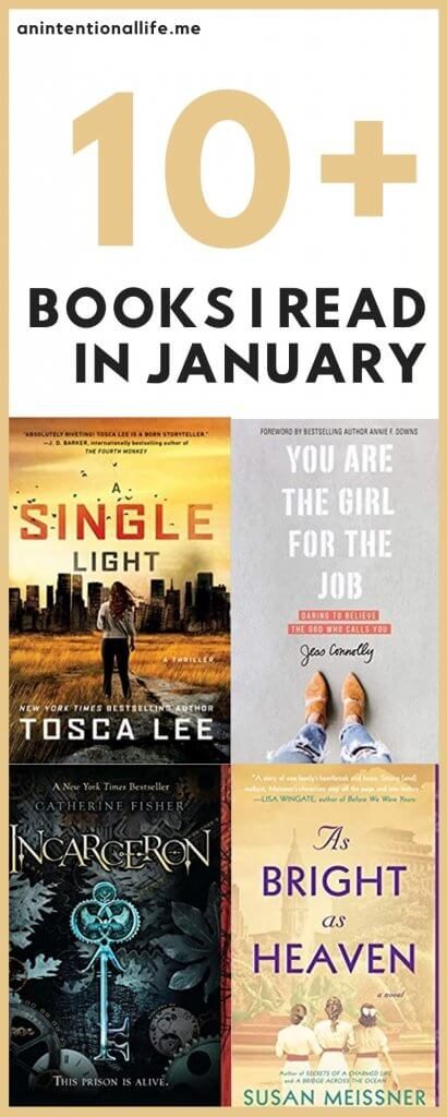 January Reading Wrap Up - some thoughts on my books from the month of January