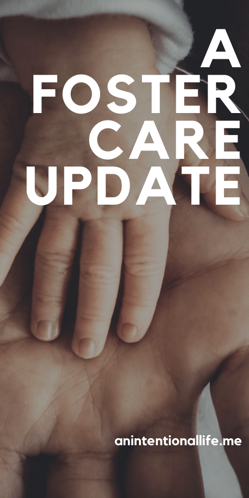 Foster Care Update and The Best Fiction Foster Care Middle Grade Books