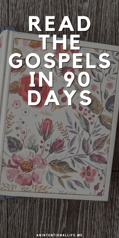 Fall Bible Reading Challenge - Reading the Gospel in 90 Days
