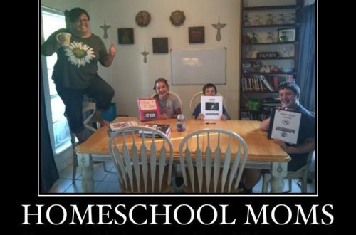 Funny (sometimes accurate, sometimes sarcastic) Homeschool Memes