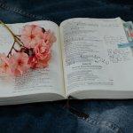 Choosing a Verse for the Season & 20 Verse Ideas