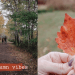 Autumn Vibes Vlog - cozy fall activities
